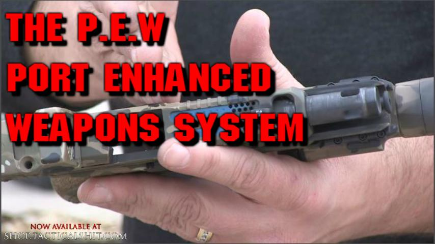 The P.E.W Port Enhanced Weapons System