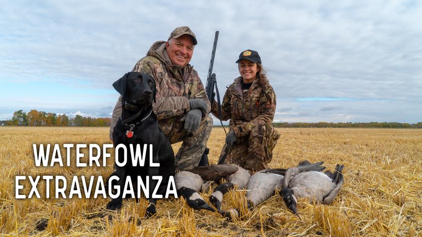Waterfowl Hunt Extravaganza at Great Grey Outfitters