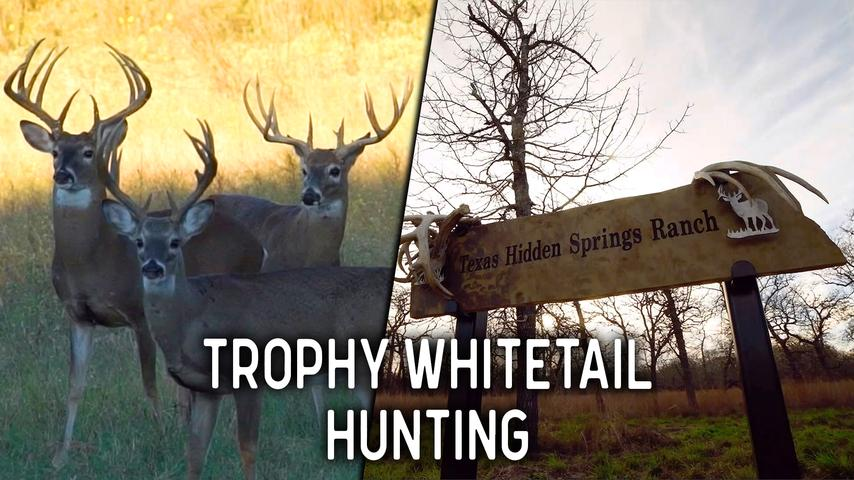 Trophy Whitetail Hunting at the Texas Hidden Springs Ranch