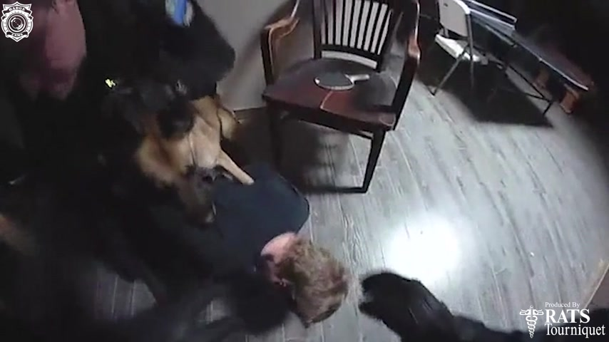 K9 Cisco Takes a Bite Out of Dumbest Burglar Ever