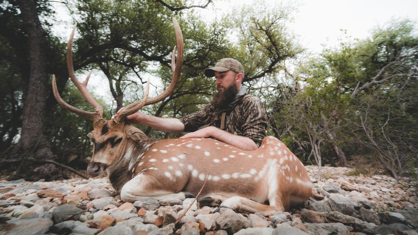 Hunting Axis Deer In South Texas | THE HUNGER