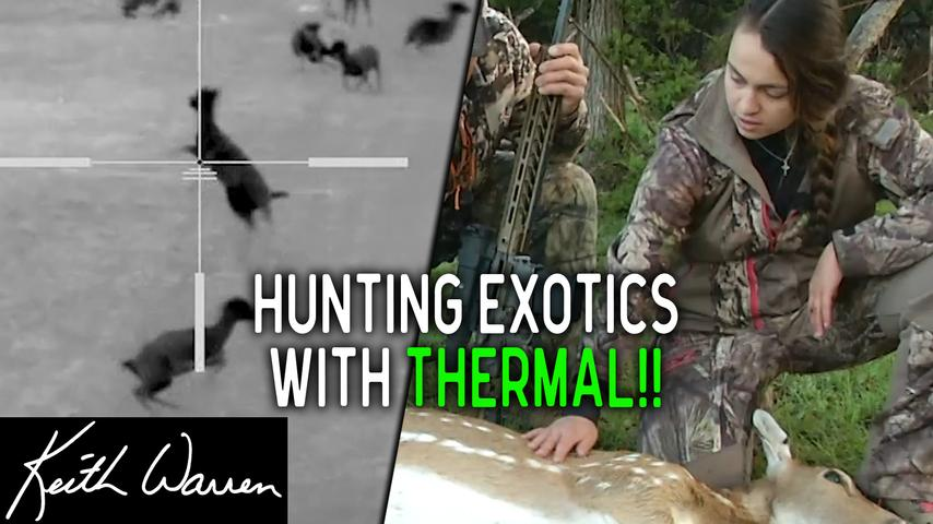 Texas Exotic Hunt - A family that hunts together