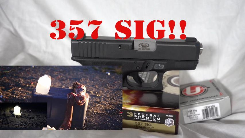 A Case for the 357 Sig