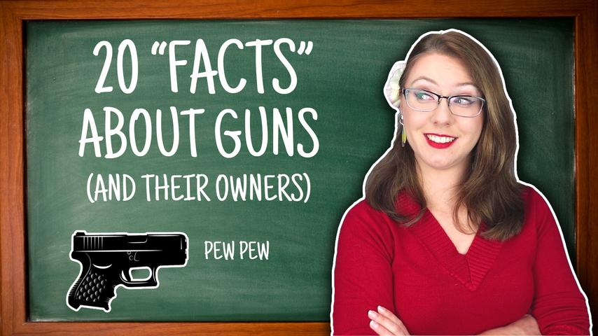 "20 ""Facts"" About Guns (and Their Owners)"